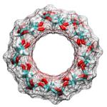 Gamma-ciclodextrine